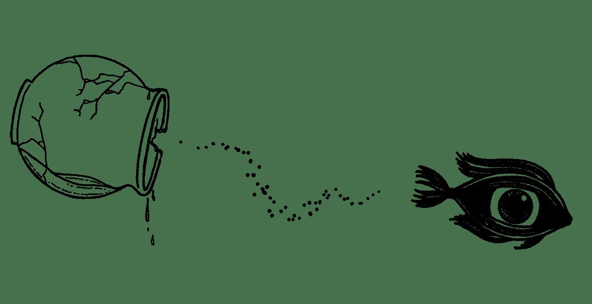fisheye-gallery-issue40-irregularskatemag