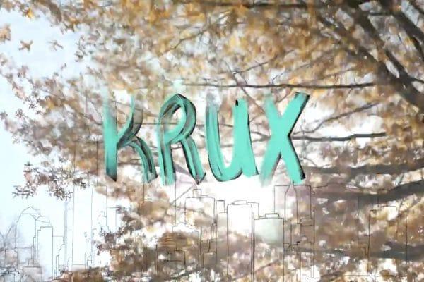 Krux-new-turn-in-ney-york-city-irregularskatemag-arin