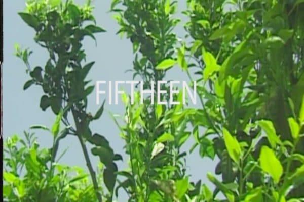 fiftheen