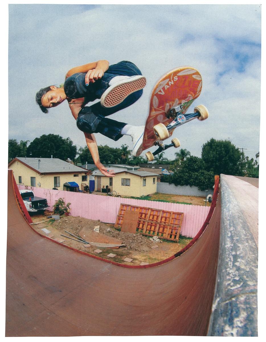 vans-skate-classics-irregularskatemag